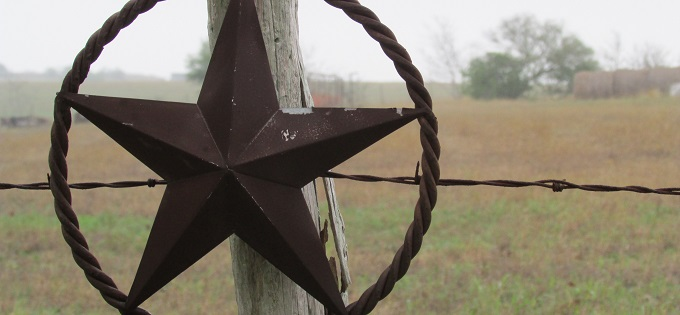 Misty Metal Texas Star